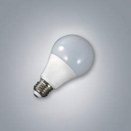 LED 농협 BULB 10W