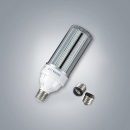 LED 보안등 30W (투명)